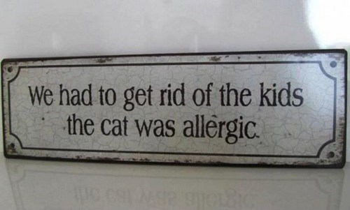 cat,kids,signs,g rated,Parenting FAILS