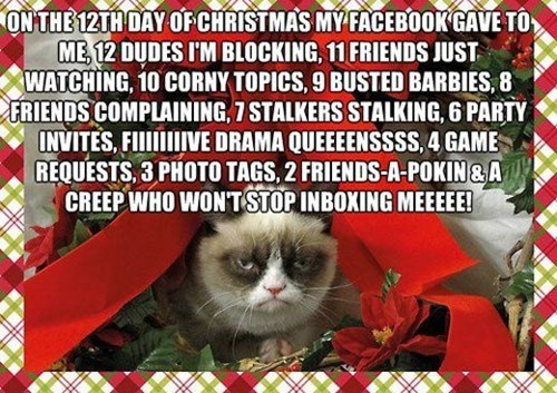 12 days of christmas Grumpy Cat tard holidays