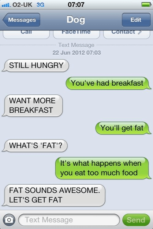 breakfast,iPhones,still hungry,texts from dog