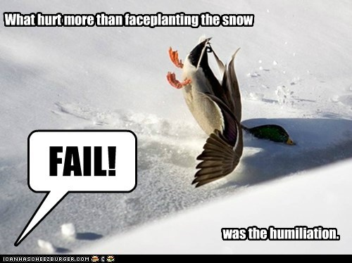 humiliation duck FAIL snow crash faceplant