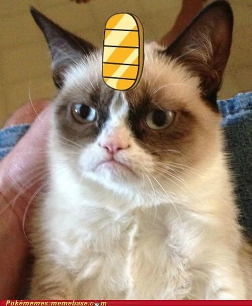 Meowth,Grumpy Cat,tard