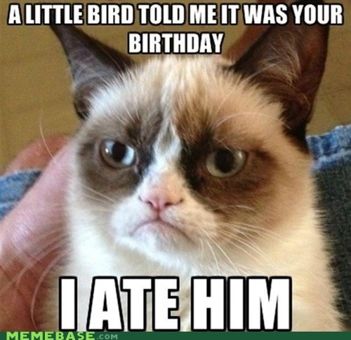 tardar sauce birthdays little birdy Grumpy Cat - 6837170432