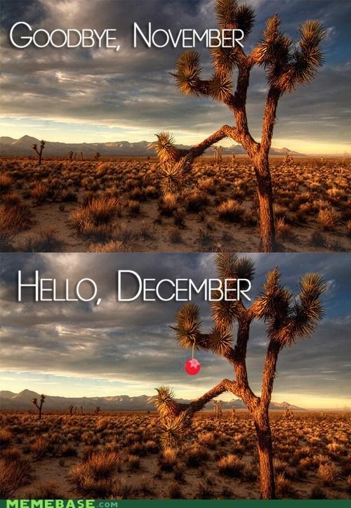 christmas tree december winter jingle memes - 6837207552