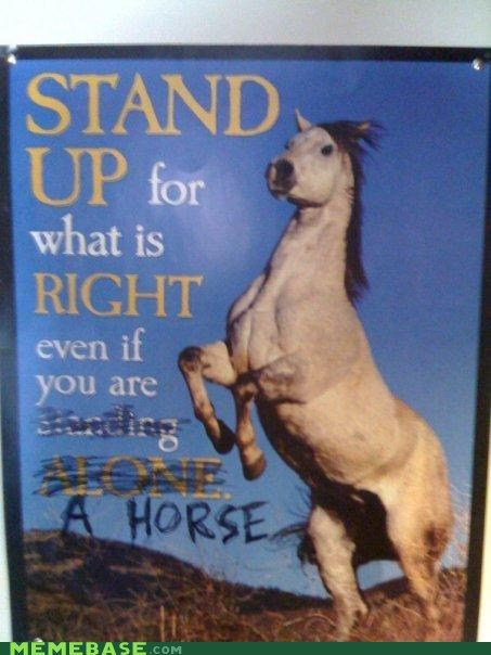 poster,emo,stand up,horses
