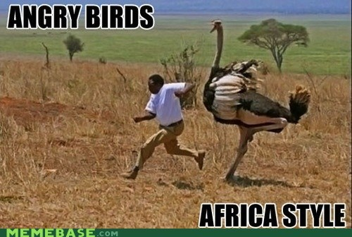 cant-tell-if-racist angry birds africa - 6837599488