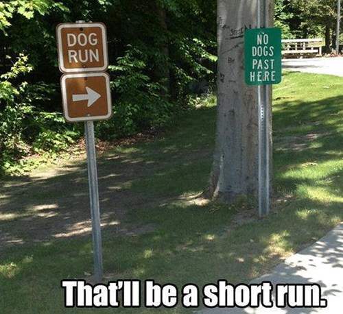 sign dogs pets run exercise