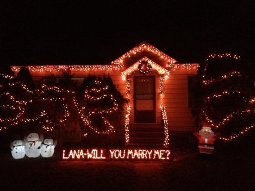 house yard proposal christmas lights - 6837675776