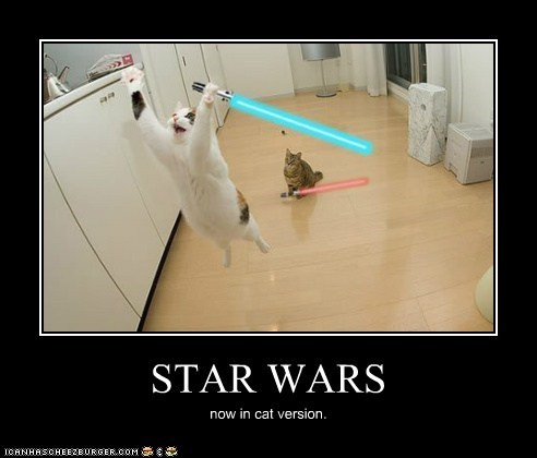 STAR WARS now in cat version.