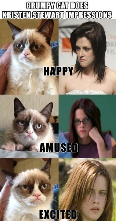 kristen stewart,impressions,Grumpy Cat,emotions,smile