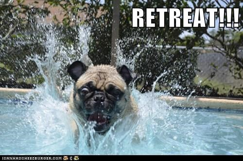 RETREAT!!!