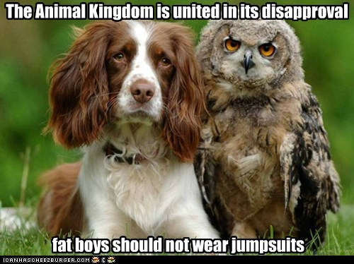 The Animal Kingdom is united in its disapproval fat boys should not wear jumpsuits