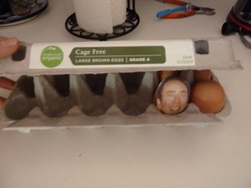 pun,eggs,nicolas cage,prank