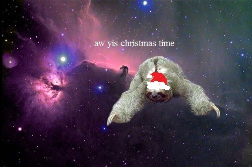 christmas,holiday,santa,funny,sloth