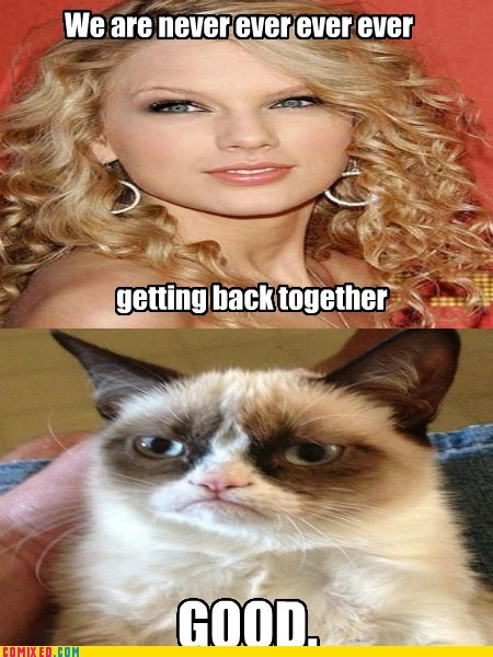 taylor swift song we are never ever getting back together Grumpy Cat tard