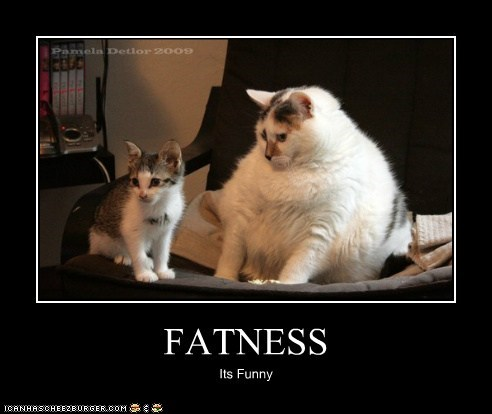 FATNESS Its Funny