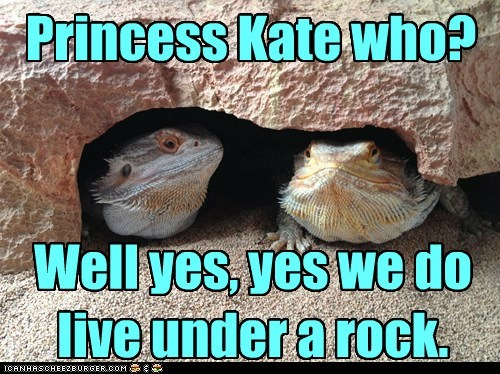 Princess Kate who? Well yes, yes we do live under a rock.