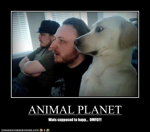ANIMAL PLANET Wats supposed to happ... OMFG!!!