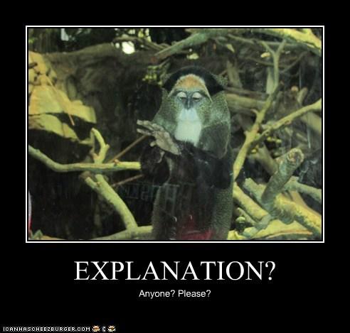 EXPLANATION? Anyone? Please?