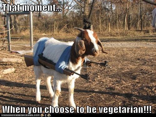 guns goat that moment threatening choose vegetarian - 6841403392