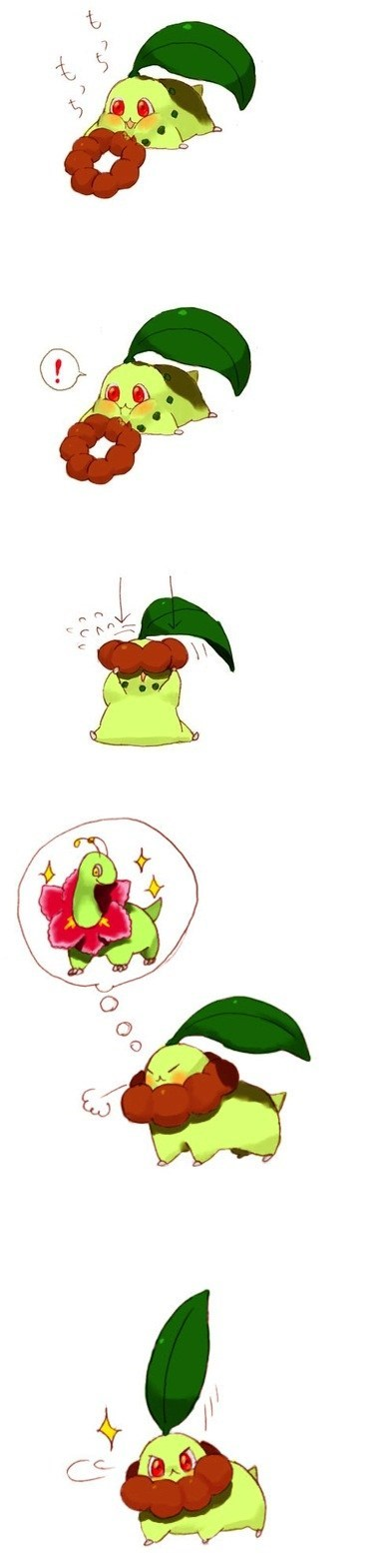 Chikorita,evolution,hnnnng,cute