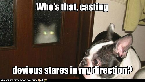 Who's that, casting devious stares in my direction?