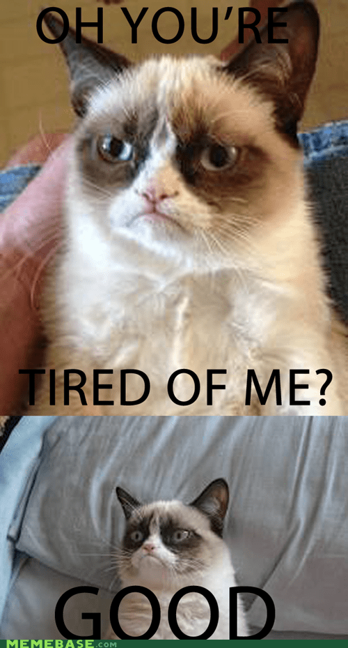 tardar sauce overused Grumpy Cat - 6842214144