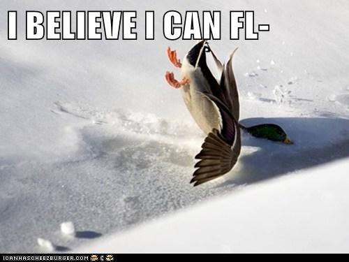 I BELIEVE I CAN FL-