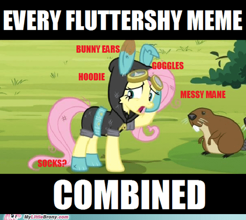 she came out of a tree,Memes,fluttershy