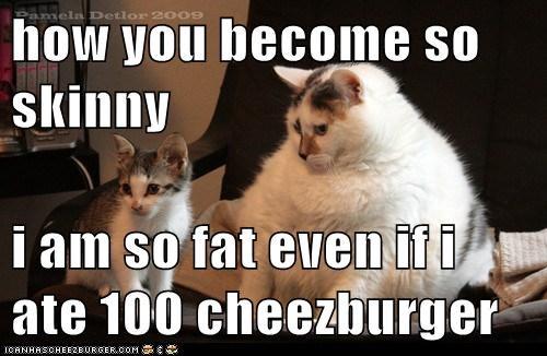 Cheezburger Image 6842522880