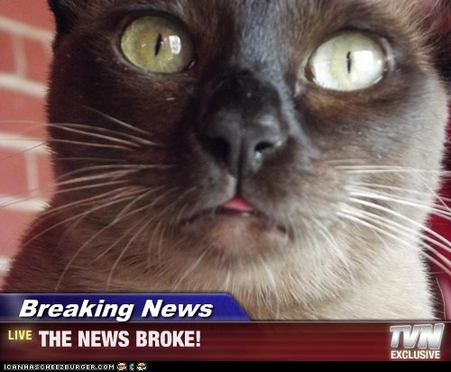 Breaking News - THE NEWS BROKE!
