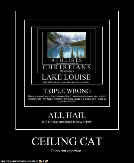 CEILING CAT Does not approve..