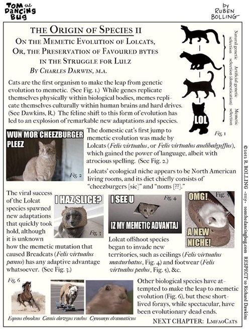 lolcats evolution history origin of species science Cats scientific - 6843625472