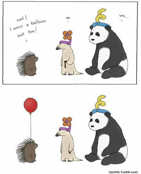 porcupine,hats,balloon,animals
