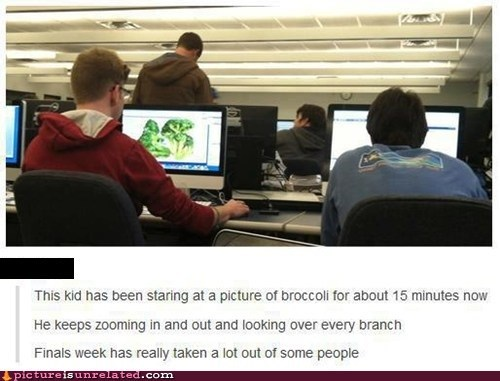 school broccoli stress computer college