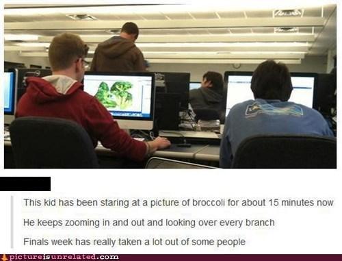 school broccoli stress computer college - 6843713792