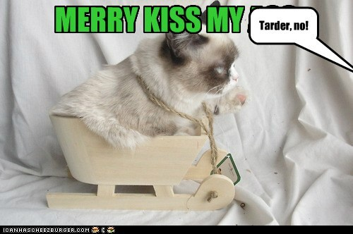 christmas,12 days of catmas,captions,Grumpy Cat,Cats,catmas