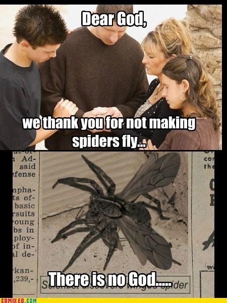 god news religion spider praying flying - 6844045568