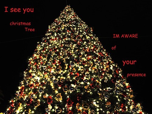 christmas meme tree funny Xmas - 6844082432