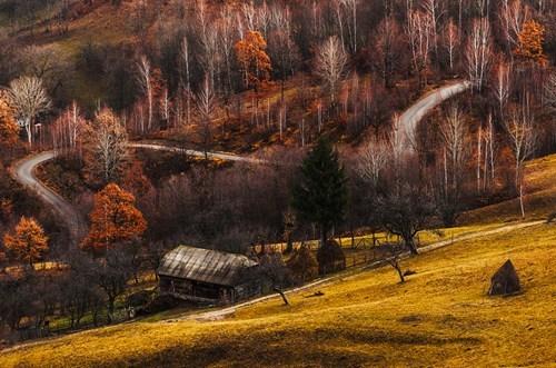 autumn hills fall