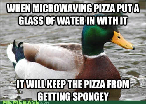 Actual Advice Mallard,pizza,advice,noms