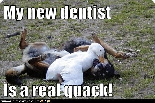 My new dentist Is a real quack!