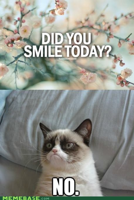 tardar sauce Grumpy Cat smile - 6845672192