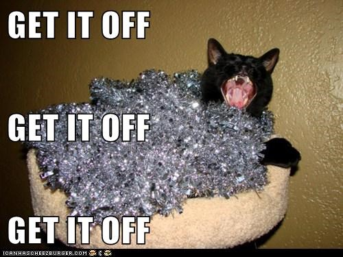 christmas,off,tinsel,captions,get it off,Cats