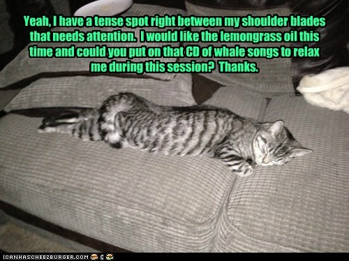 therapy captions massage relax Cats - 6846242560