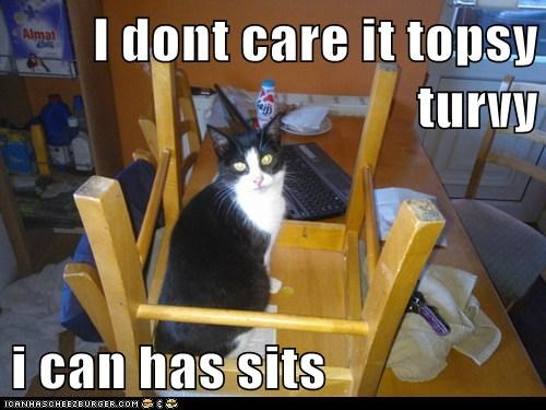 I dont care it topsy turvy  i can has sits