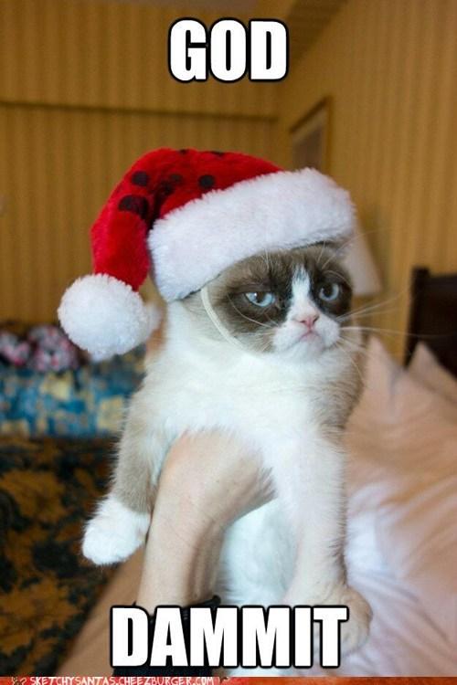 christmas,meme,Grumpy Cat,tard,funny,holidays