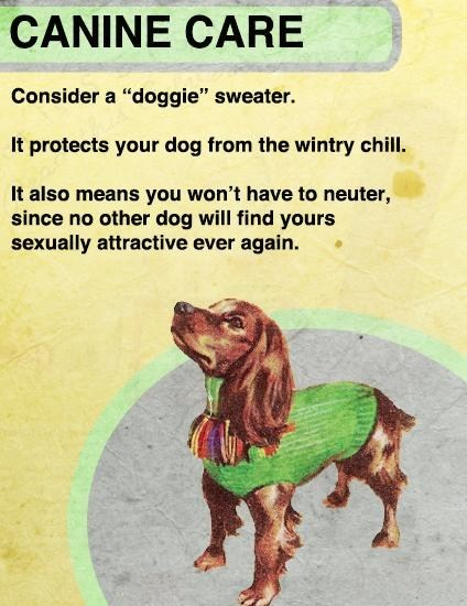 dog sweaters - 6846852352