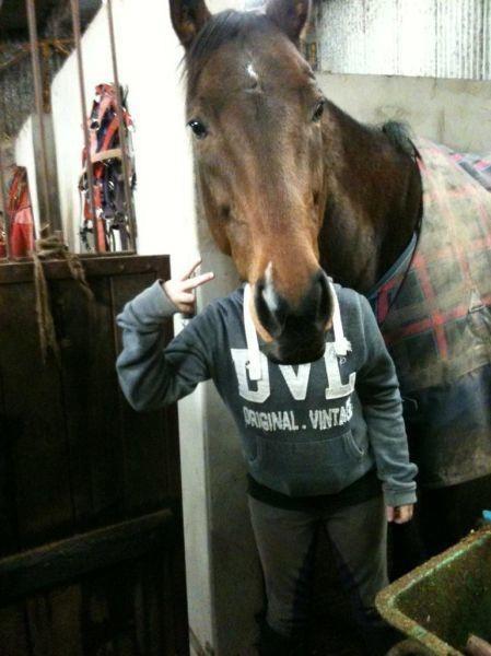 sarah jessica parker face replace horse - 6847223296