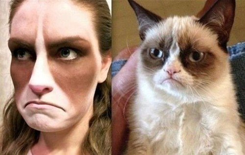 makeup,Grumpy Cat,Cats