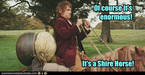 enormous,Martin Freeman,shire,Bilbo Baggins,The Hobbit,big,horse